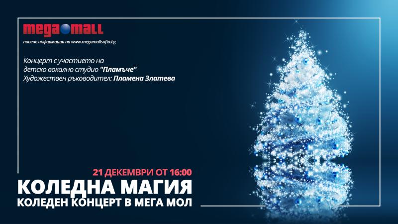 Снимка: Коледна магия - концерт в Мега Мол