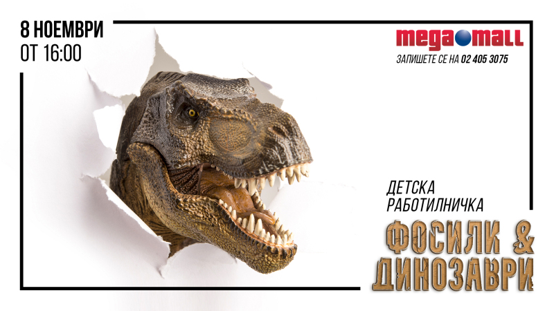 """Снимка: Детска работилница """"Фосили и динозаври"""""""